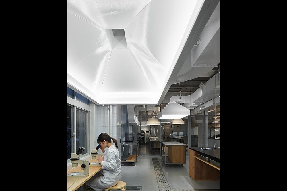 Kyushu University biolab